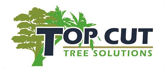 Top Cut Trees