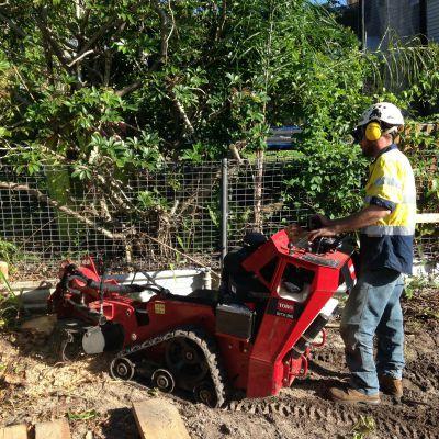stump grinding and removal sunshine coast