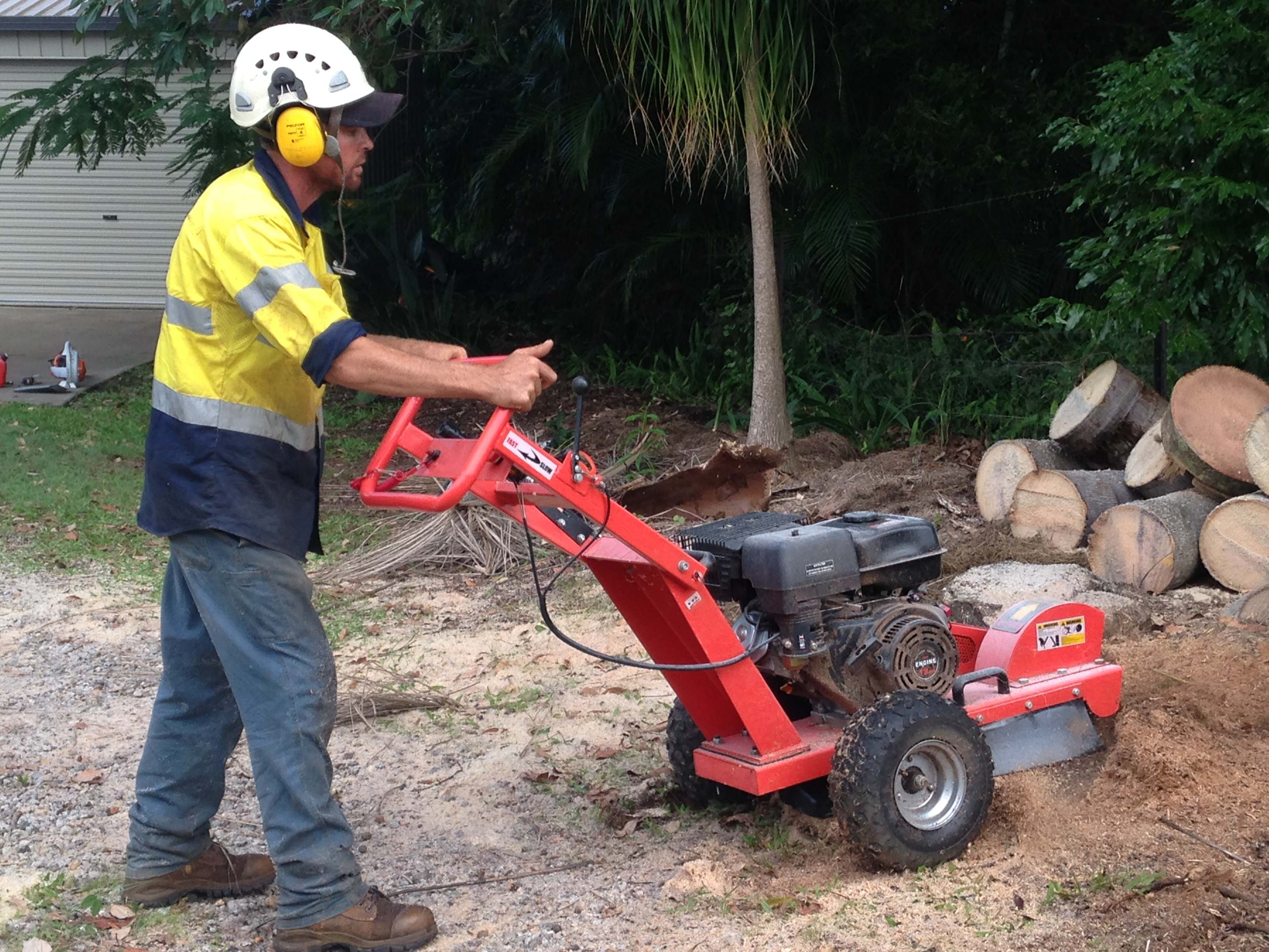 Stump Grinding Sunshine Coast