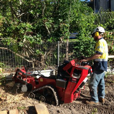 stump grinding and removal sunshine coast